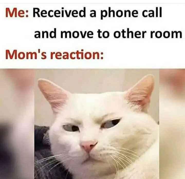 🤣 லொள்ளு - Me : Received a phone call and move to other room Mom ' s reaction : - ShareChat