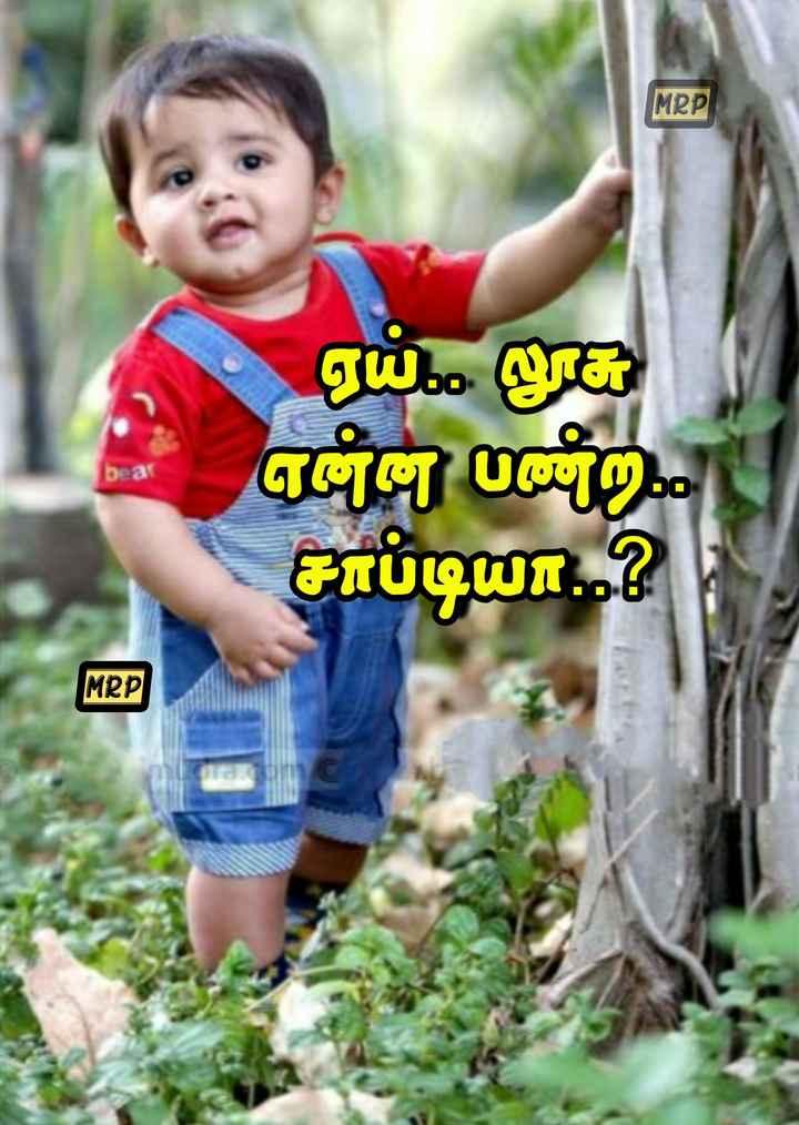 🤣 லொள்ளு - MRP ஏய் . . . லூசு ஏg 0 ) . சாப்டியா . . ? . MRP - ShareChat