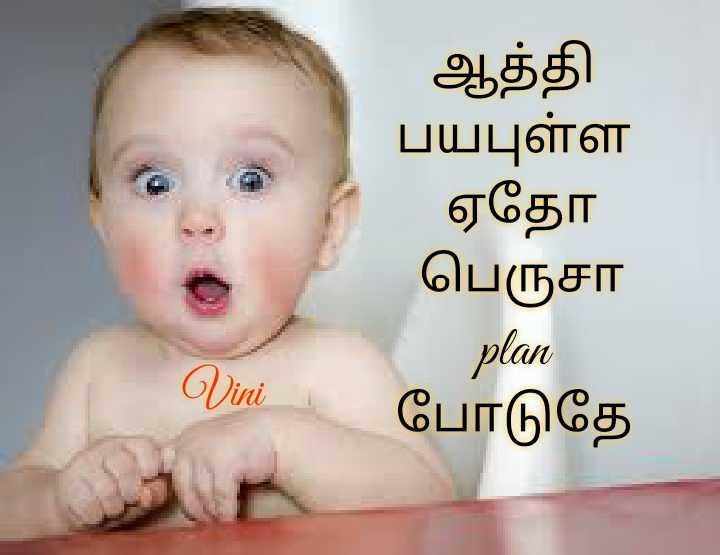 🤣 லொள்ளு - ஆத்தி பயபுள்ள ஏதோ பெருசா plan போடுதே Vini - ShareChat
