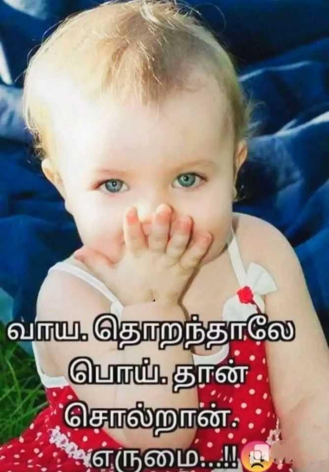 🤣 லொள்ளு - வாய தொறந்தாலே பொய் , தான் . சொல்றான் . எருமைப்பட்ட - ShareChat