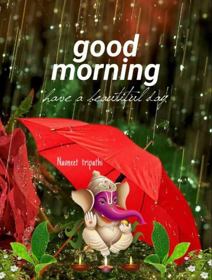 💐வாழ்த்து - good morning have a beautiful lado Navneet tripathi - ShareChat