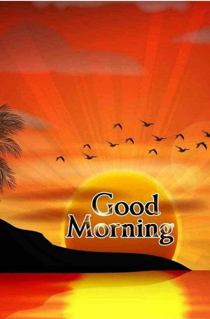 💐வாழ்த்து - Good Morning - ShareChat