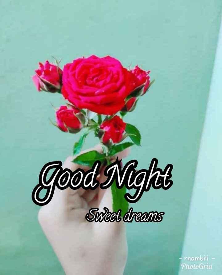 💐வாழ்த்து - Good Night Sweet dreams - rnambili - PhotoGrid - ShareChat