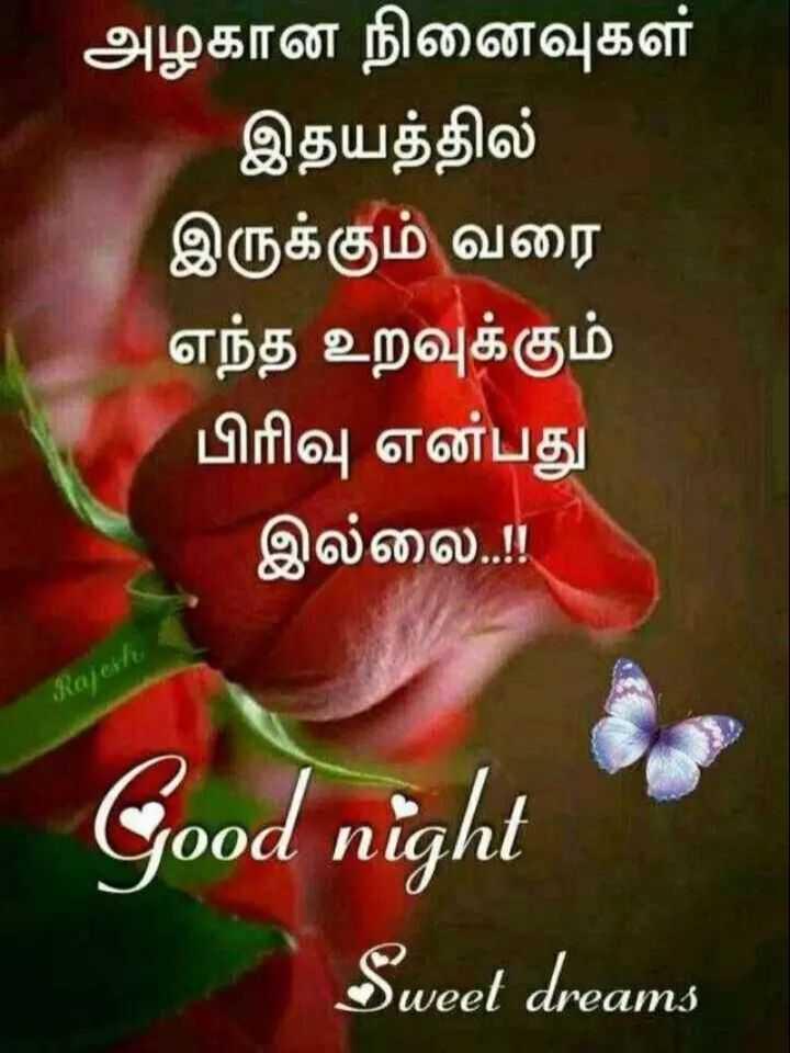 💐வாழ்த்து - அழகான நினைவுகள் இதயத்தில் இருக்கும் வரை எந்த உறவுக்கும் பிரிவு என்பது இல்லை . . ! Rajesti Good night Sweet dreams - ShareChat