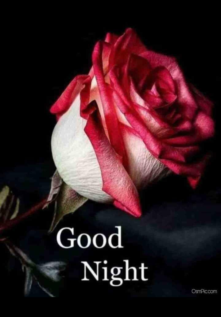 💐வாழ்த்து - Good Night Osmic . com - ShareChat
