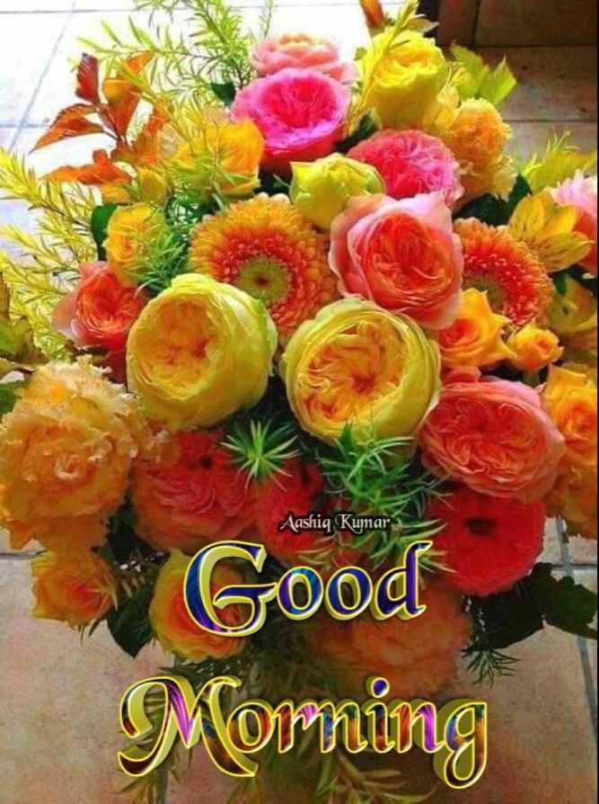 🌷 வாழ்த்து - Aashiq Kumar Good Morning - ShareChat