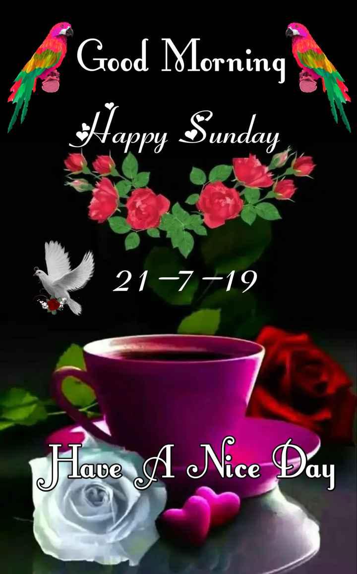 🌷 வாழ்த்து - Good Morning Happy Sunday 21 - 7 - 19 Jlave A Nice Day - ShareChat