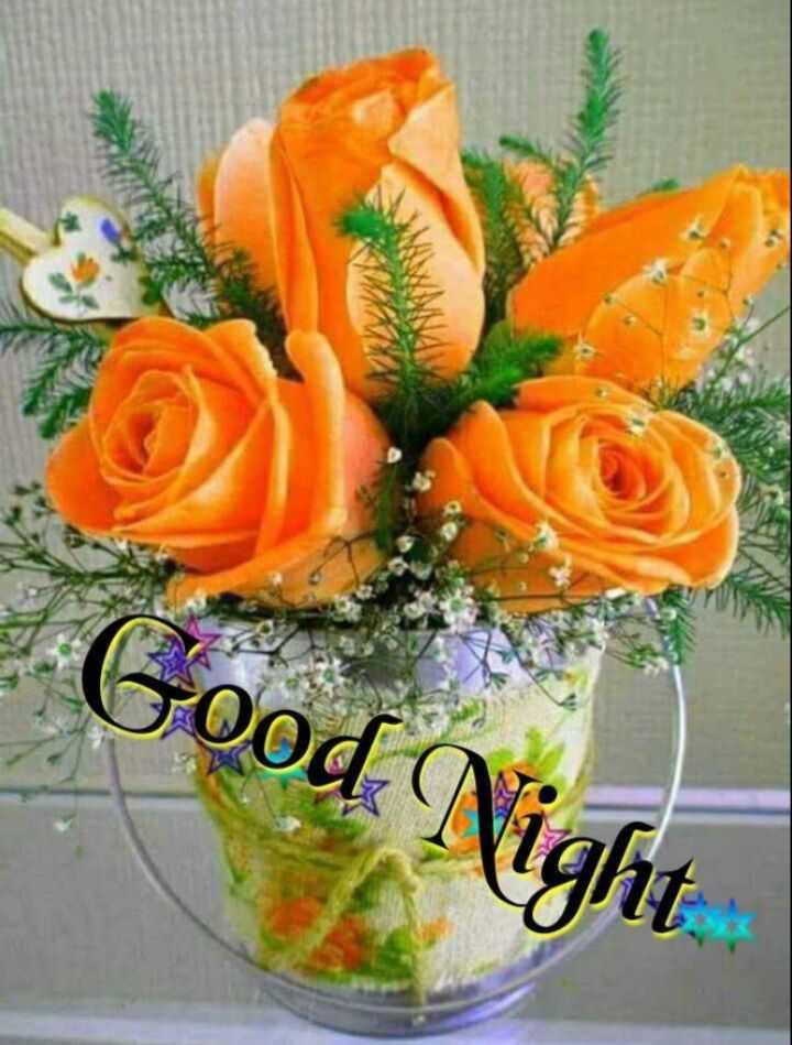 🌷 வாழ்த்து - Good Night - ShareChat