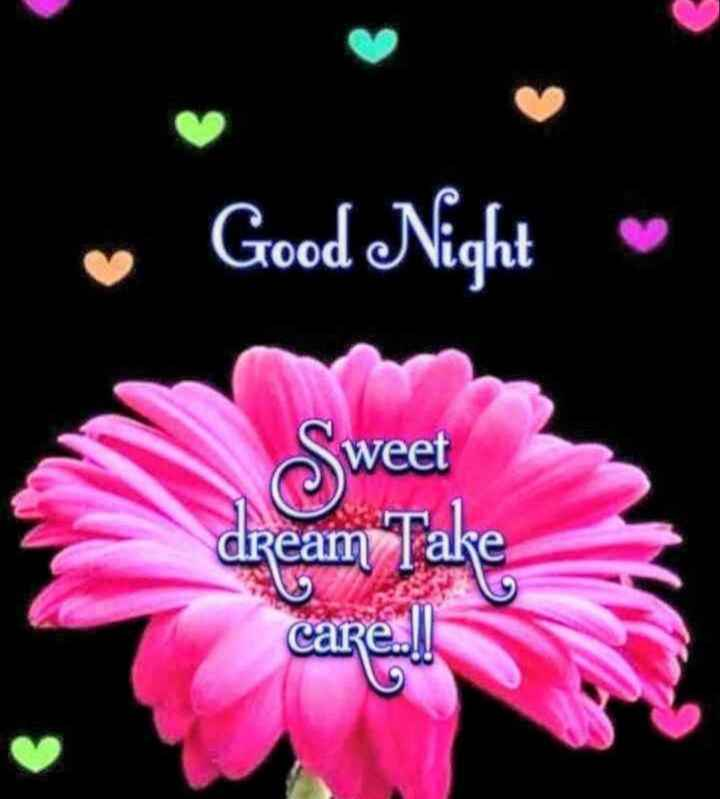 🌷 வாழ்த்து - • Good Night Tood Sweet dream Take - ShareChat