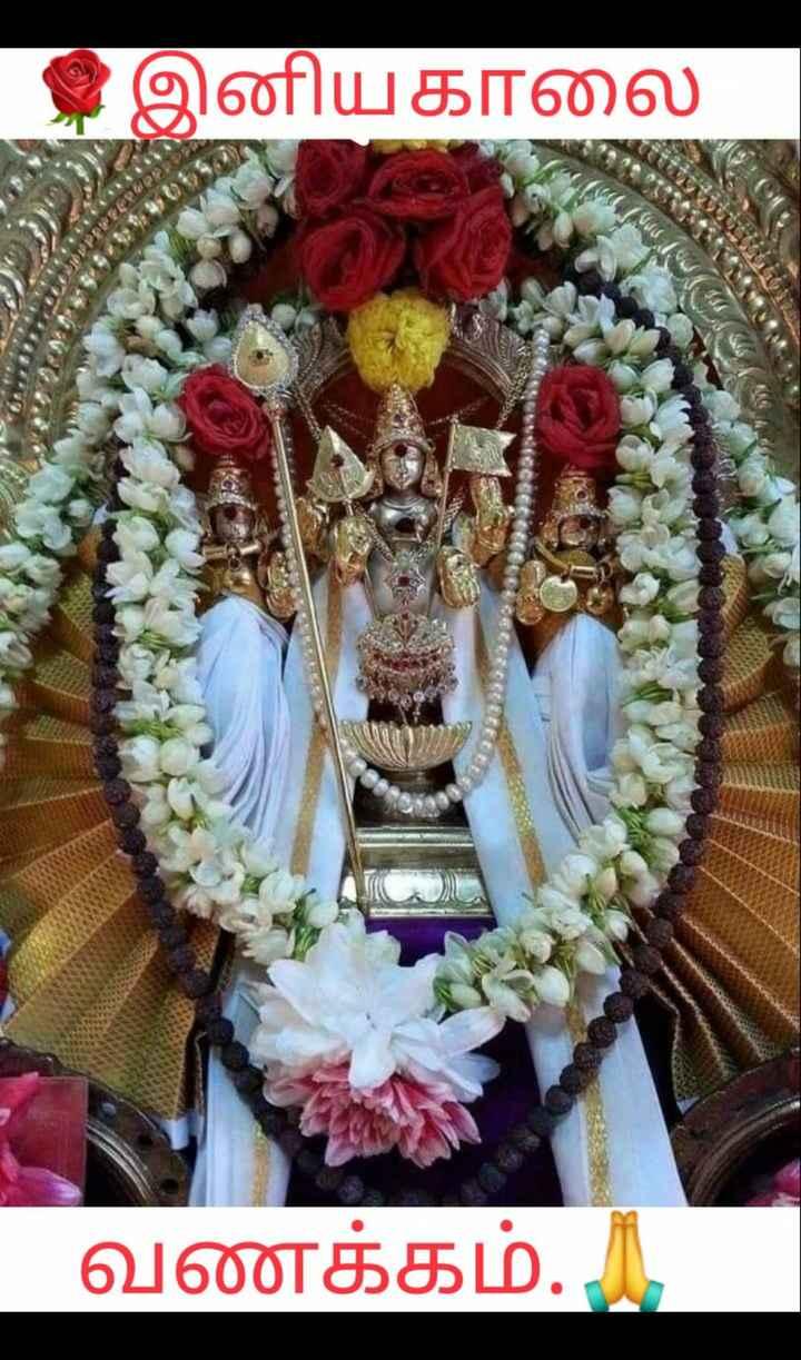 🌷 வாழ்த்து - இம்மரot வணக்கம் . . பகாலை ay ' rmy D - ShareChat