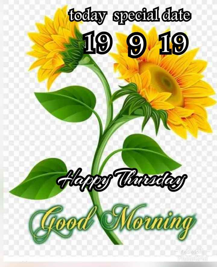 🌷 வாழ்த்து - today special date 19 9 19 Happy Thandang Good Morning - ShareChat