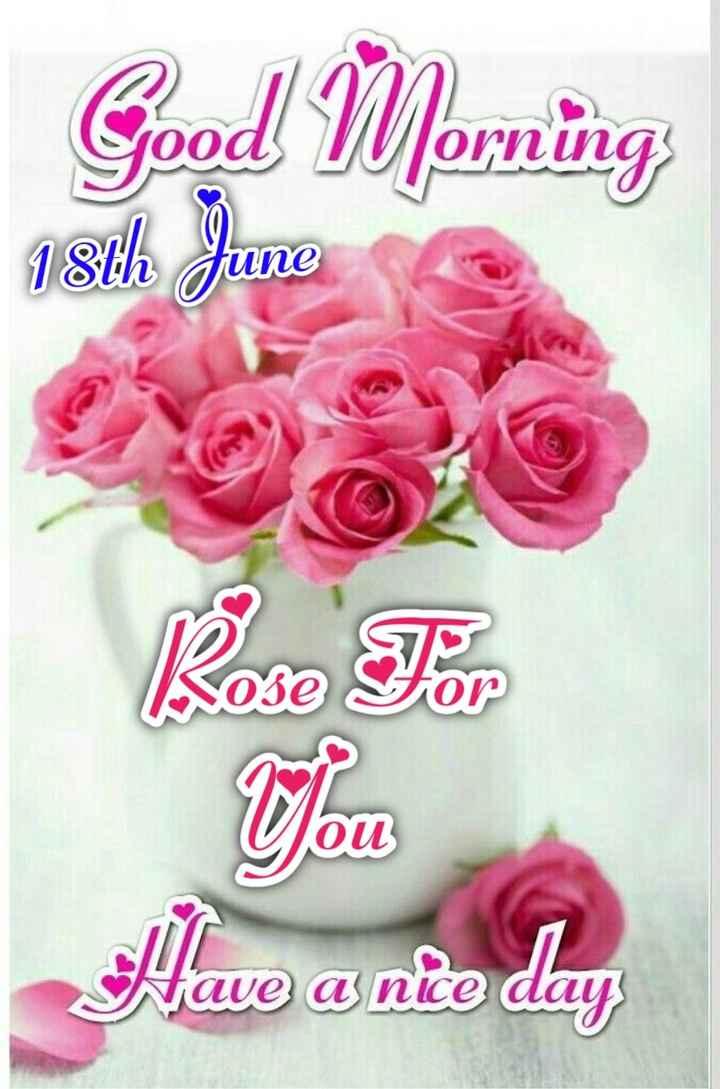 💐வாழ்த்து - Good Yerning O Una 18th June fune Have a nice day - ShareChat