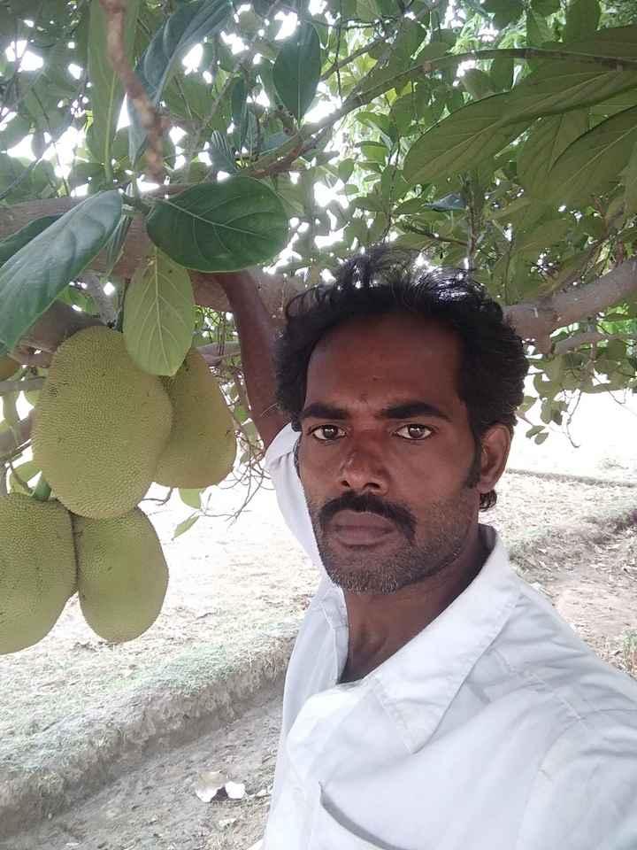 🧑 விராத் கோலி - ShareChat