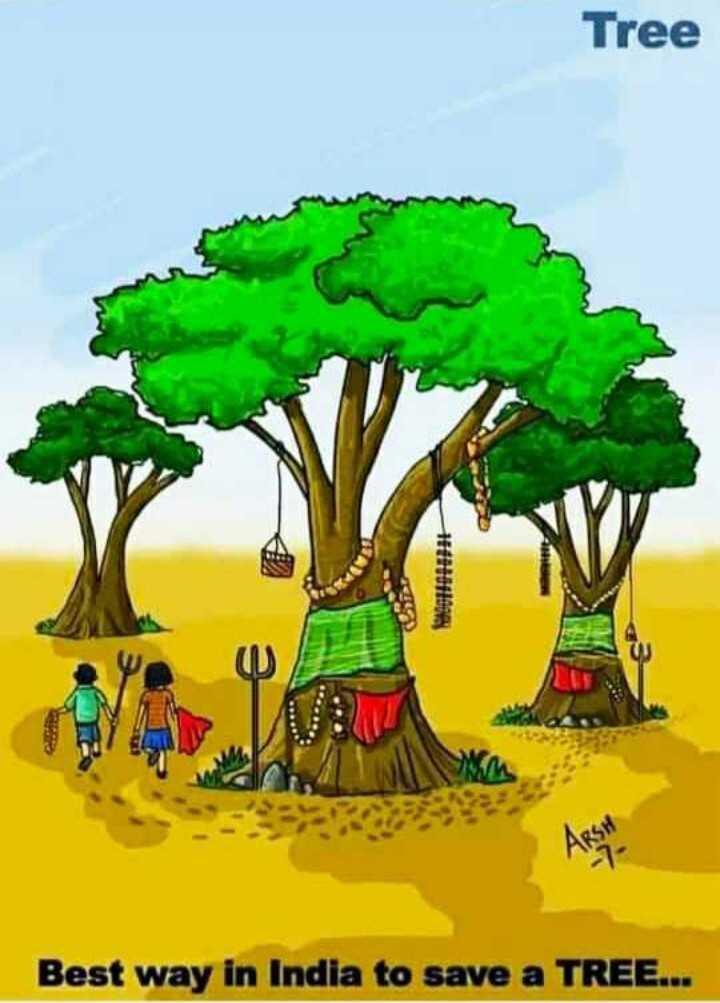 🌱விவசாயம் - Tree ARSH Best way in India to save a TREE . . . - ShareChat