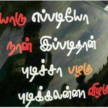 ஷேர்சாட் ஸ்பெஷல் - vாடு எப்படியோ நான் இப்படிதான் புடிச்சா பழகு புடிக்கலன்னா விழte - ShareChat
