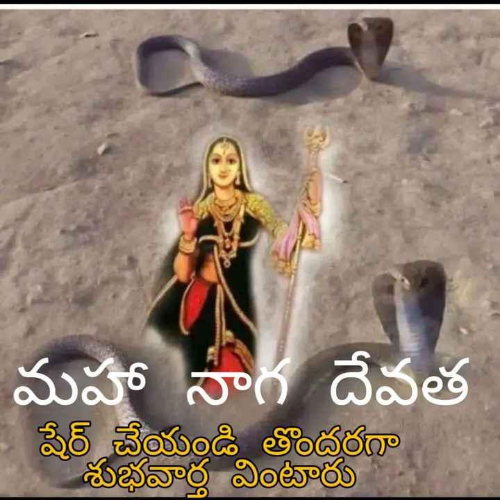 📺 అగ్నిసాక్షి సీరియల్ 📺 - మహా నాగ దేవత షేర్ చేయండి తొందరగా శుభవార్త వింటారు - ShareChat