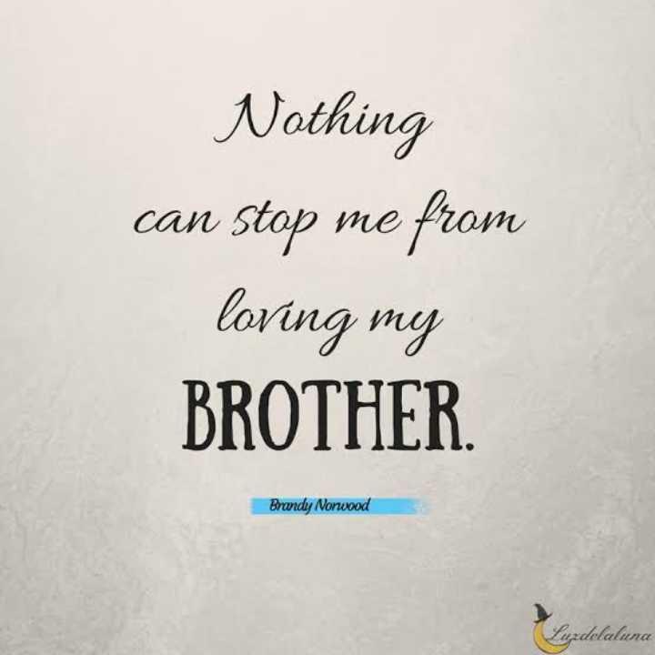 అన్న చెల్లిల్ల అనుబంధం - Nothing can stop me from loving my BROTHER . Brandy Nonwood Luzdelaluna - ShareChat