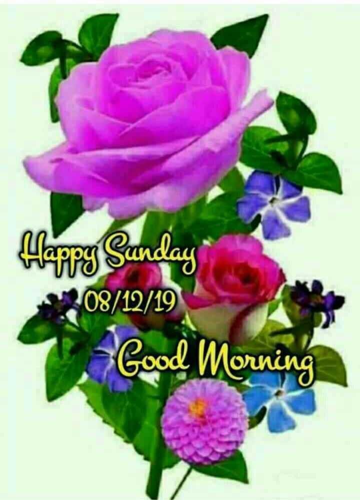 🕉ఆదివారం స్పెషల్ విషెస్ - Happy Sunday 08 / 12 / 19 Good Morning - ShareChat