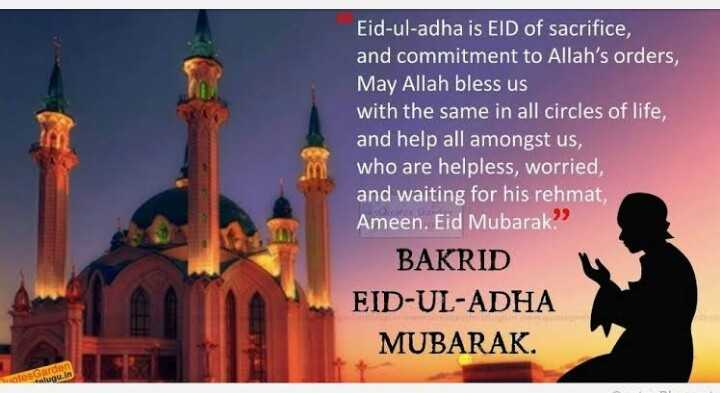 ఈద్ ఉల్ అధ బక్రీ ఈద్ - Eid - ul - adha is EID of sacrifice , and commitment to Allah ' s orders , May Allah bless us with the same in all circles of life , and help all amongst us , who are helpless , worried , and waiting for his rehmat , Ameen . Eid Mubarak . BAKRID EID - UL - ADHA MUBARAK hotesGarden alugu . in - ShareChat