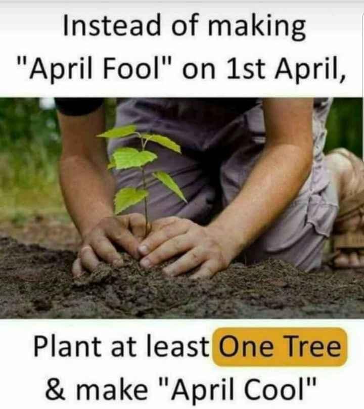ఏప్రిల్ ఫూల్స్ డే - Instead of making April Fool on 1st April , Plant at least One Tree & make April Cool - ShareChat