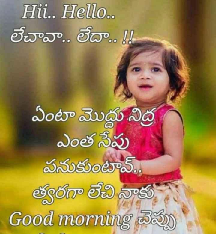🤱క్యూట్ బేబీ🤳 - Hii . . Hello . . లేచావా . . లేదా . . ! ఏంటా మొద్దు నిద్ర ఎంత సేపు పనుకుంటావ్ . . త్వరగా లేచి నాకు ఆ Good morning చెప్పు - - ShareChat