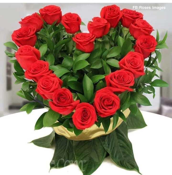 🏝గోదావరి - FB / Roses , Images - ShareChat