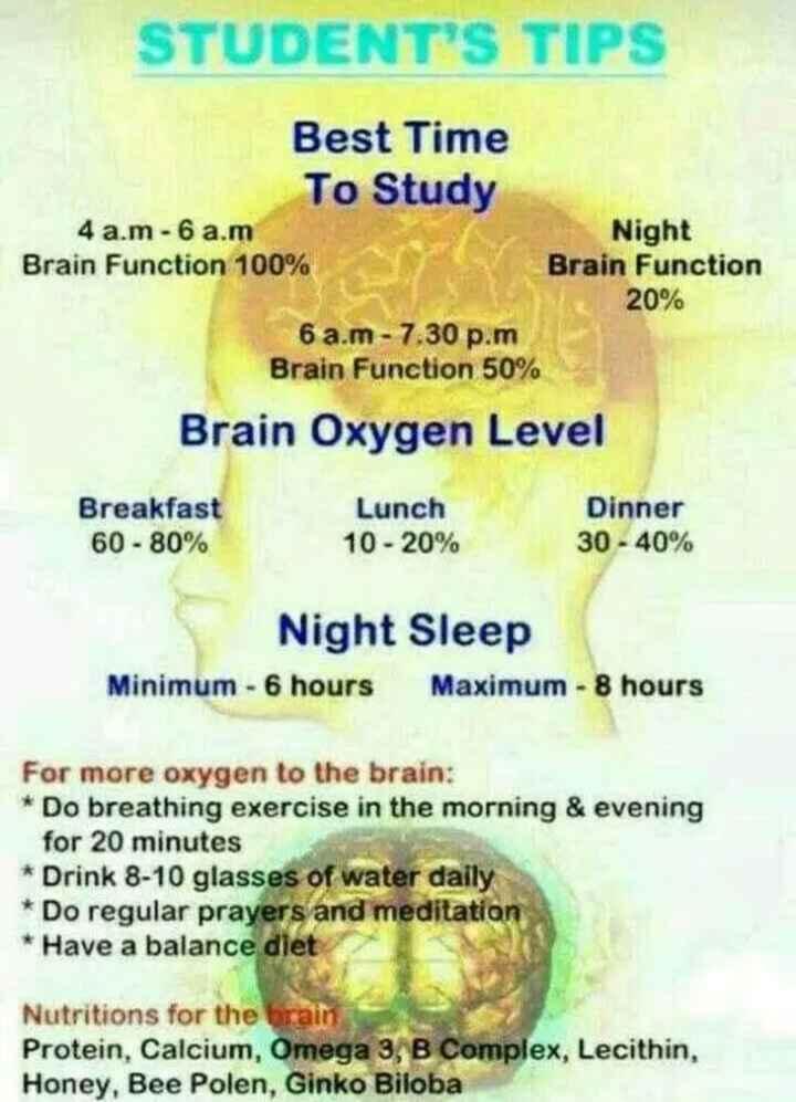 చదువుకోరా..తమ్ముడు - STUDENT ' S TIPS Best Time To Study 4 a . m - 6 a . m Night Brain Function 100 % Brain Function 20 % 6 a . m - 7 . 30 p . m Brain Function 50 % Brain Oxygen Level Breakfast 60 - 80 % Lunch 10 - 20 % Dinner 30 - 40 % Night Sleep Minimum - 6 hours Maximum - 8 hours For more oxygen to the brain : * Do breathing exercise in the morning & evening for 20 minutes * Drink 8 - 10 glasses of water daily * Do regular prayers and meditation * Have a balance diet Nutritions for the brain Protein , Calcium , Omega 3 , B Complex , Lecithin , Honey , Bee Polen , Ginko Biloba - ShareChat