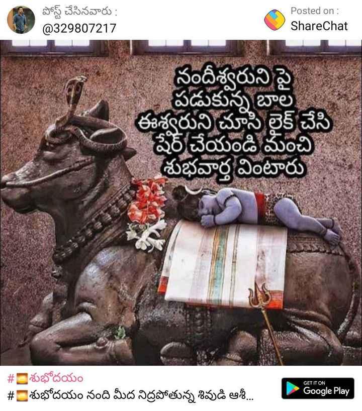 🖋జాతకం - పోస్ట్ చేసినవారు : @ 329807217 Posted on : ShareChat నందీశ్వరుని పై పడుకున్న బాల ఈశ్వరుని చూసి లైక్ చేసి షేర్ చేయండి మంచి శుభవార్త వింటారు GET IT ON # 2 శుభోదయం - # = శుభోదయం నంది మీద నిద్రపోతున్న శివుడి ఆశీ . . . | Google Play - ShareChat