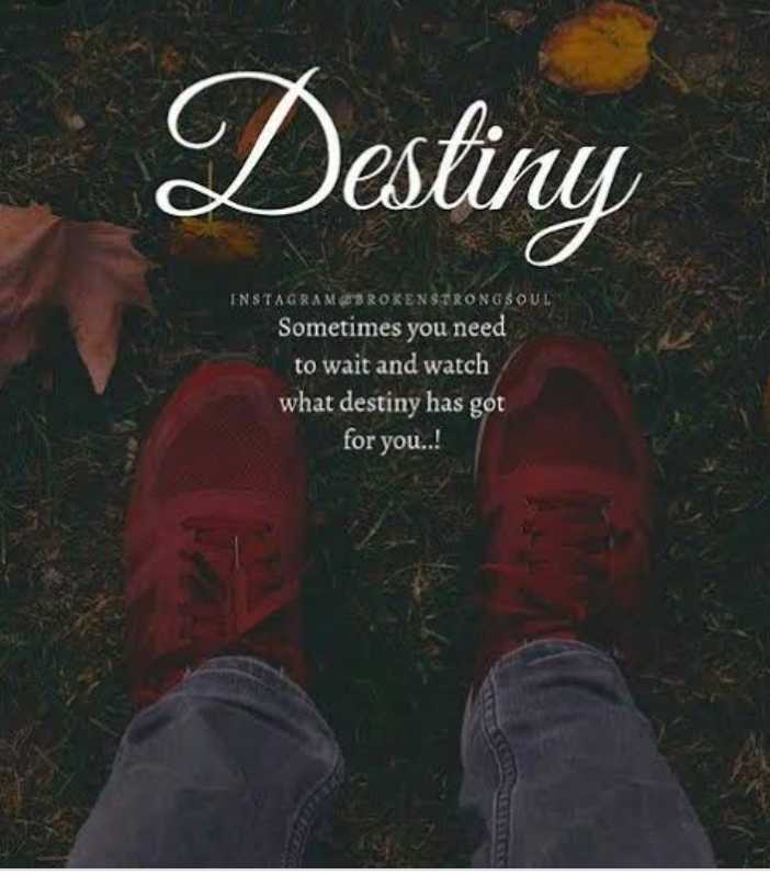 🤣ట్రాల్స్ & మీమ్స్ - Destiny INSTAGRAM BROKENSTRONGSOUL Sometimes you need to wait and watch what destiny has got for you . . ! - ShareChat