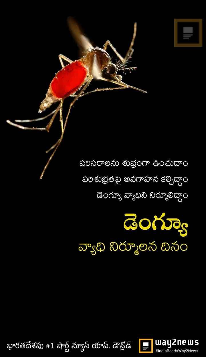 🐝డెంగ్యూ వ్యాధి నివారణ దినోత్సవం - | | పరిసరాలను శుభ్రంగా ఉంచుదాం ' పరిశుభ్రతపై అవగాహన కల్పిద్దాం డెంగ్యూ వ్యాధిని నిర్మూలిద్దాం డెంగ్యూ వ్యాధి నిర్మూలన దినం భారతదేశపు # 1 షార్ట్ న్యూస్ యాప్ డౌన్లోడ్ Pavanews # IndiaReadsWay2News - ShareChat