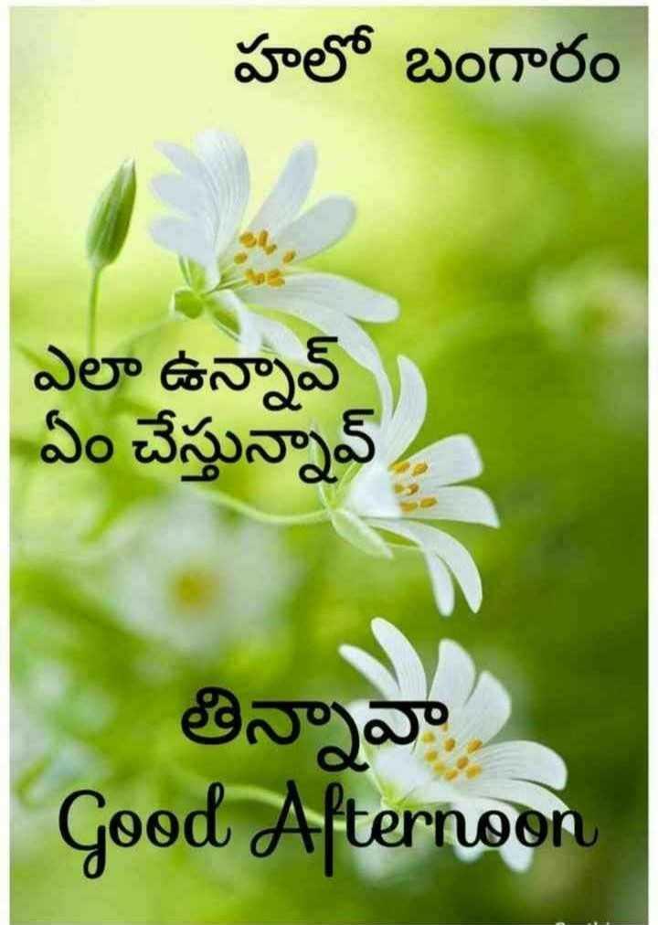 🍲తిన్నావా - హలో బంగారం ఎలా ఉన్నావ్ ఏం చేస్తున్నావ్ తిన్నావా Good Afternoon - ShareChat