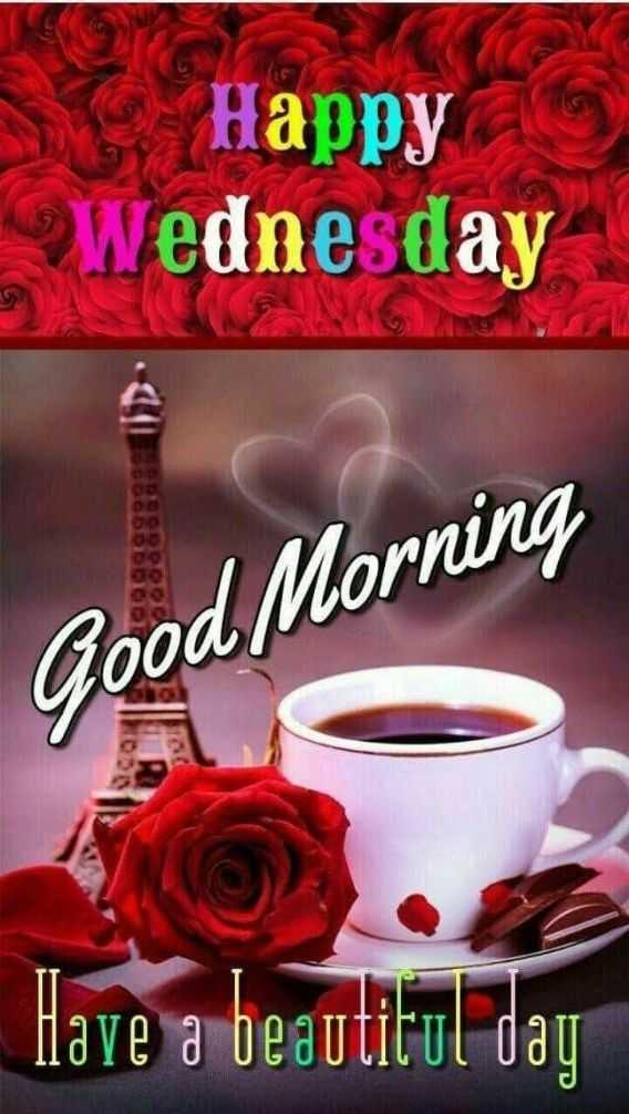 🍲తిన్నావా - Happy Wednesday Good Morning Have a beautiful day GD OD - ShareChat