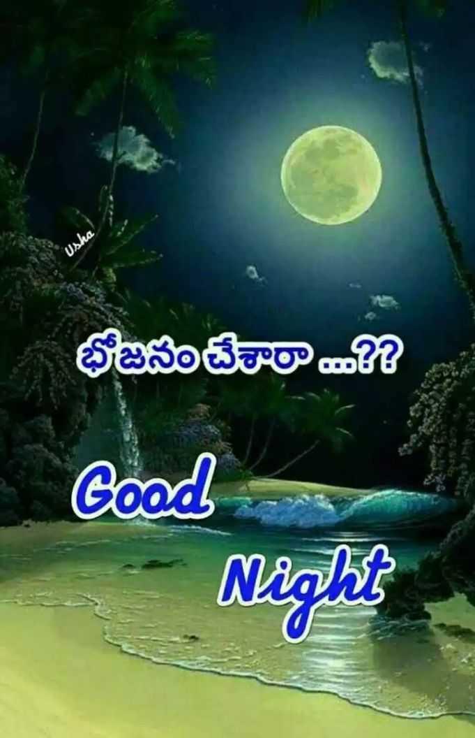 🍲తిన్నావా - Usha భోజనం చేశారా ? Good Night - ShareChat