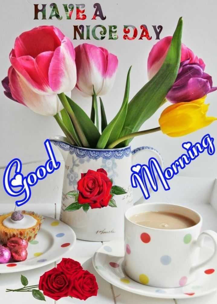 🍲తిన్నావా - HAVE A NICE DAY is Morning Good - ShareChat