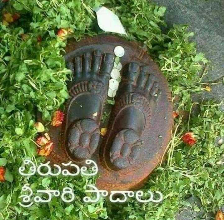 🔱తిరుమల తిరుపతి - తిరుపతి శ్రీవారి పాదాల - ShareChat