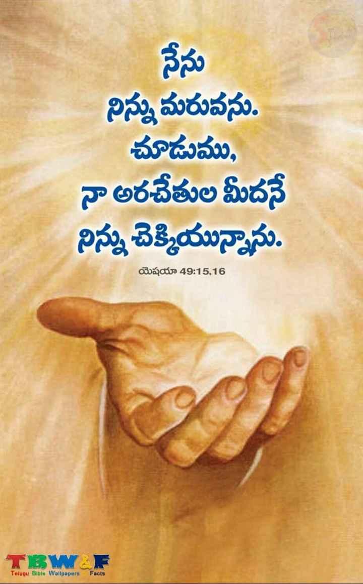 🔱దేవుళ్ళు - నేను నిన్ను మరువను . చూడుము , నా అరచేతుల మీదనే నిన్ను చెక్కియున్నాను . యెషయా 49 : 15 , 16 TBWF Telugu Bible Wallpapers Facts - ShareChat