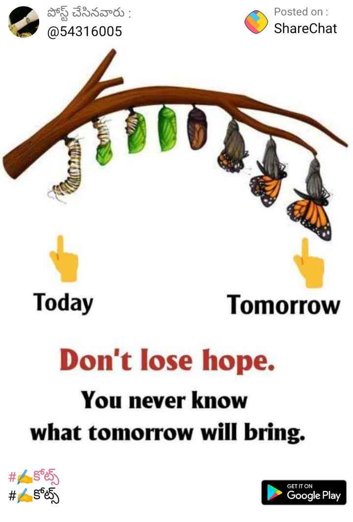 🤔💭నా ఆలోచనలు - పోస్ట్ చేసినవారు : @ 54316005 Posted on : ShareChat Today Tomorrow Don ' t lose hope . You never know what tomorrow will bring . # 25085 GET IT ON # $ 65 Google Play - ShareChat