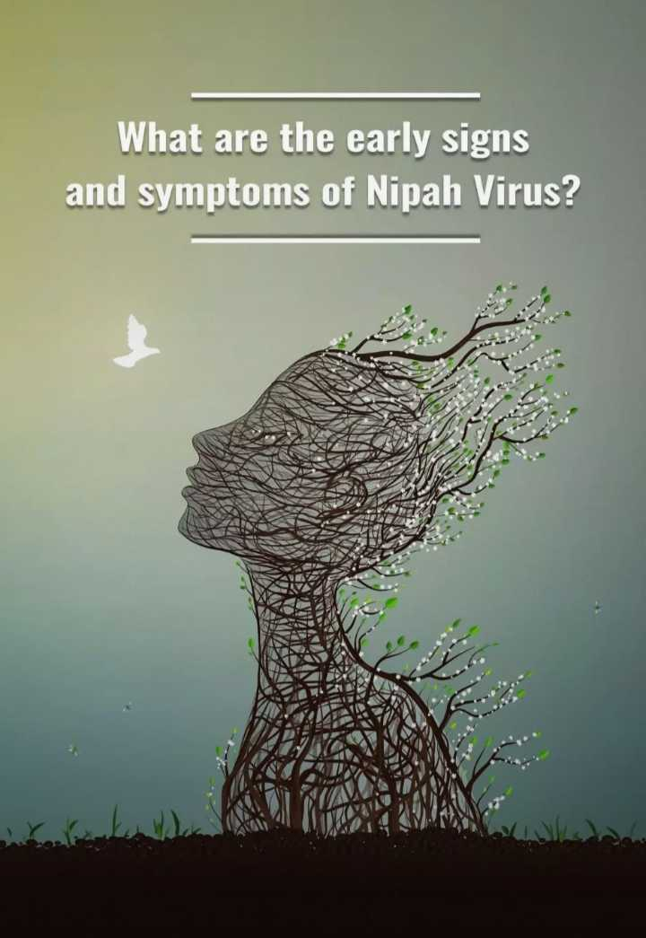 నిఫా వైరస్‌ - What are the early signs and symptoms of Nipah Virus ? - ShareChat