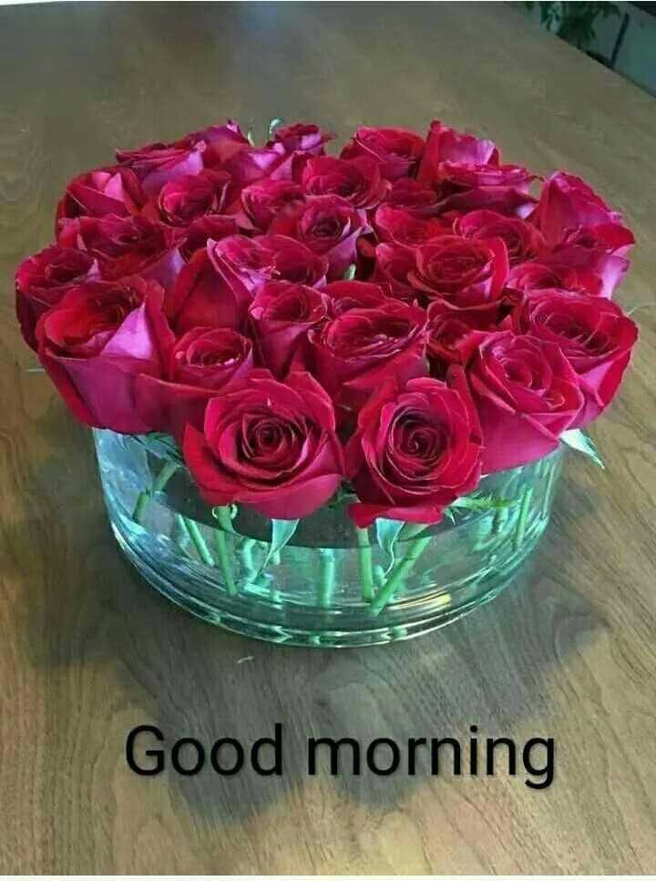 🏞 ప్రకృతి అందాలు - Good morning - ShareChat