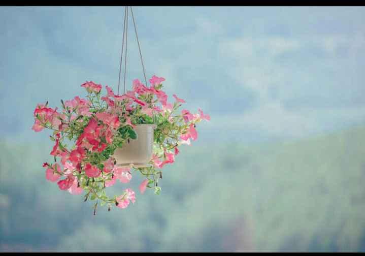 🏞 ప్రకృతి అందాలు - ShareChat