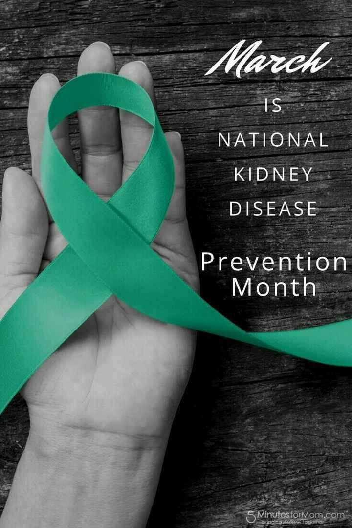 🙋ప్రపంచ కిడ్నీ డే 🎉 - March IS NATIONAL KIDNEY DISEASE Prevention Month 5 Minutesformom . com anging u s togethe - ShareChat