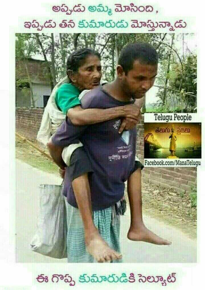 👫 బంధం - అప్పుడు అమ్మ మోసింది , ఇప్పుడు తన కుమారుడు మోస్తున్నాడు Telugu People తెలుగు ప్రజలు Facebook . com / ManaTelugu ఈ గొప్ప కుమారుడికి సెల్యూట్ - ShareChat