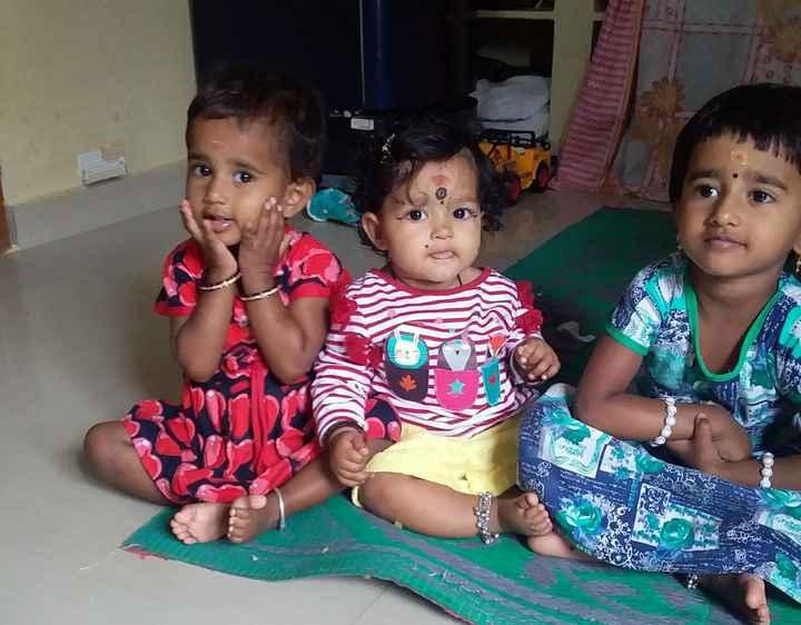 రంగు రంగుల  సీతాకోకచిలుక - - - - மரம் இட - ShareChat