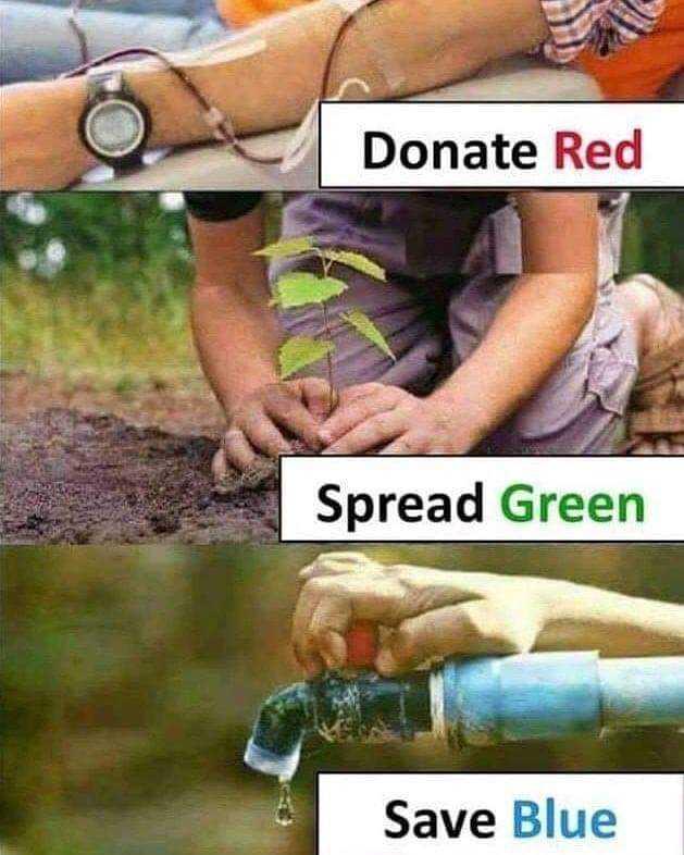 🌎వరల్డ్ ఆర్ట్ డే✍ - Donate Red Spread Green Save Blue - ShareChat