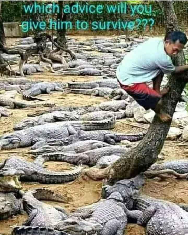 😲వింతలు -విశేషాలు - which advice will you give him to survive ? ? ? - ShareChat