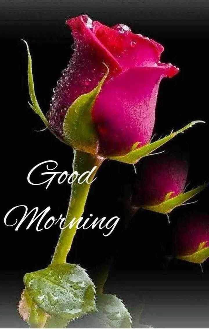 👋విషెస్ స్టేటస్ - Goga Morning - ShareChat