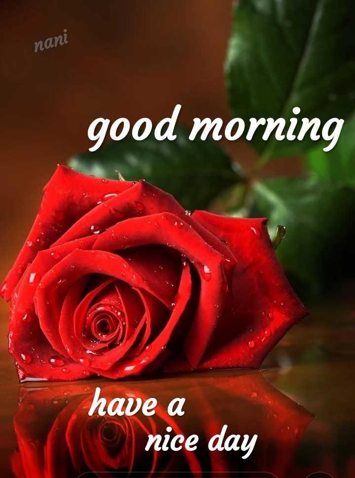 👋విషెస్ స్టేటస్ - nani good morning I have a nice day - ShareChat