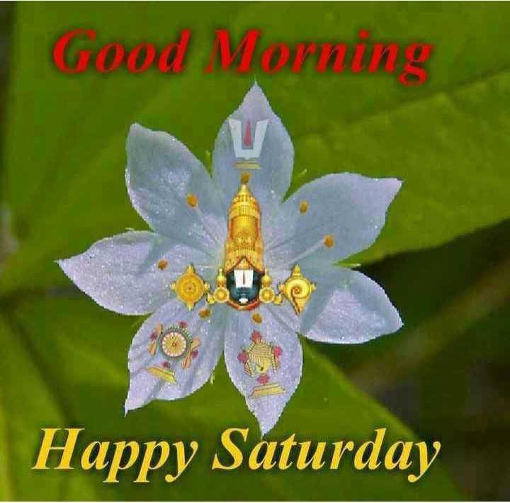 👋విషెస్ స్టేటస్ - Good Morning Happy Saturday - ShareChat