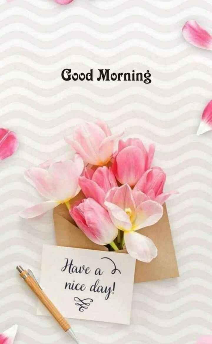 👋విషెస్ స్టేటస్ - Good Morning Have a 2 nice day ! - ShareChat