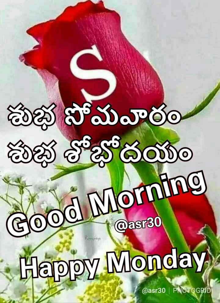 👋విషెస్ స్టేటస్ - శుభ సోమవారం శుభ శోభోదయం Good Morning @ asrB0 - - Thappy Monday @ asr30 | PNOTOGRID - ShareChat